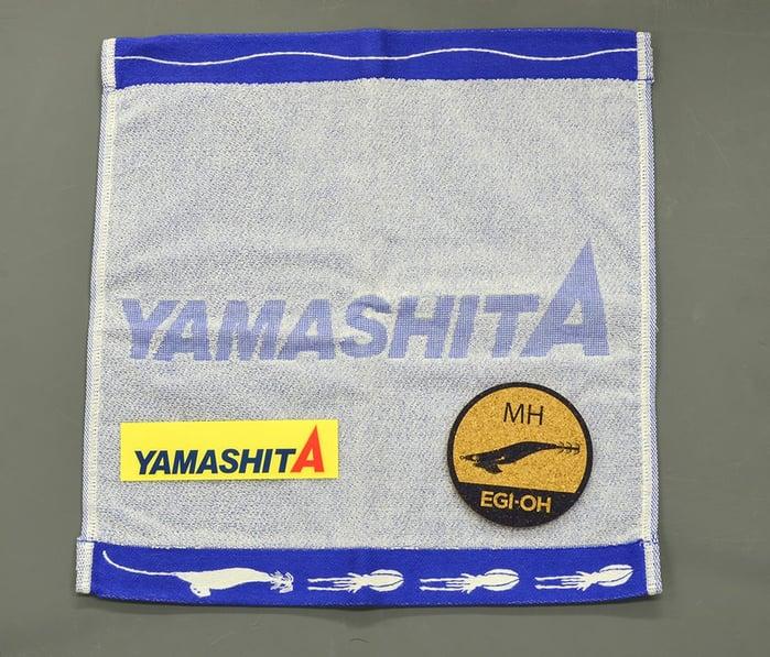 2020.2.22_yamashita_present