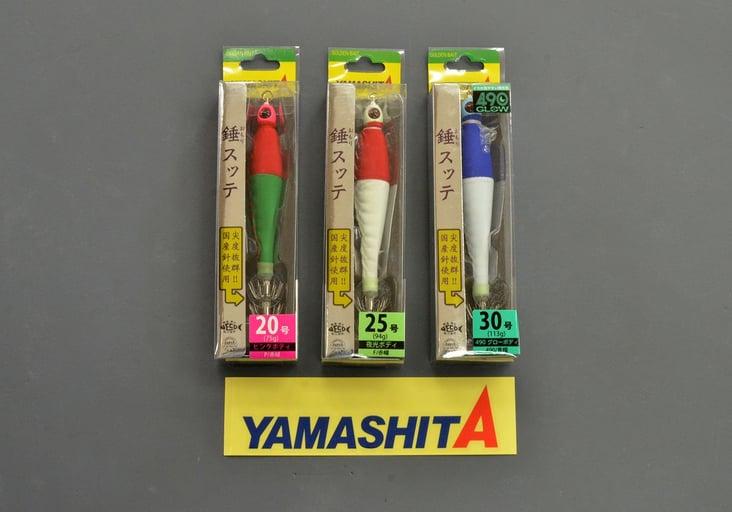 2020.7.25_yamashita_present