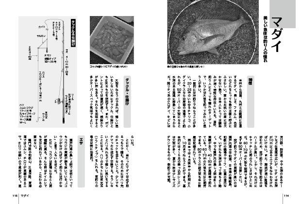 CS-003-nagetsuri