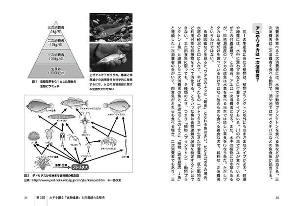 CS-004-sakana-hetta_1