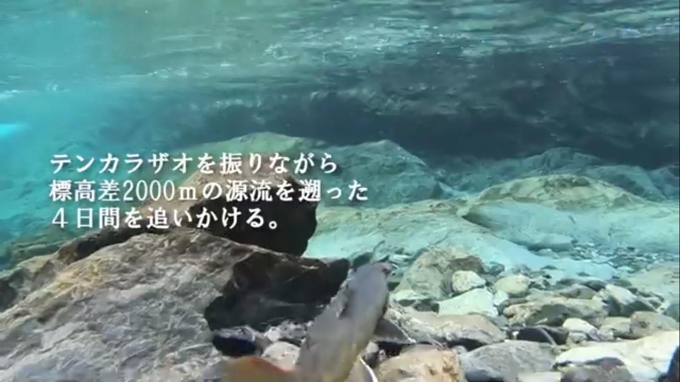 akaishi05
