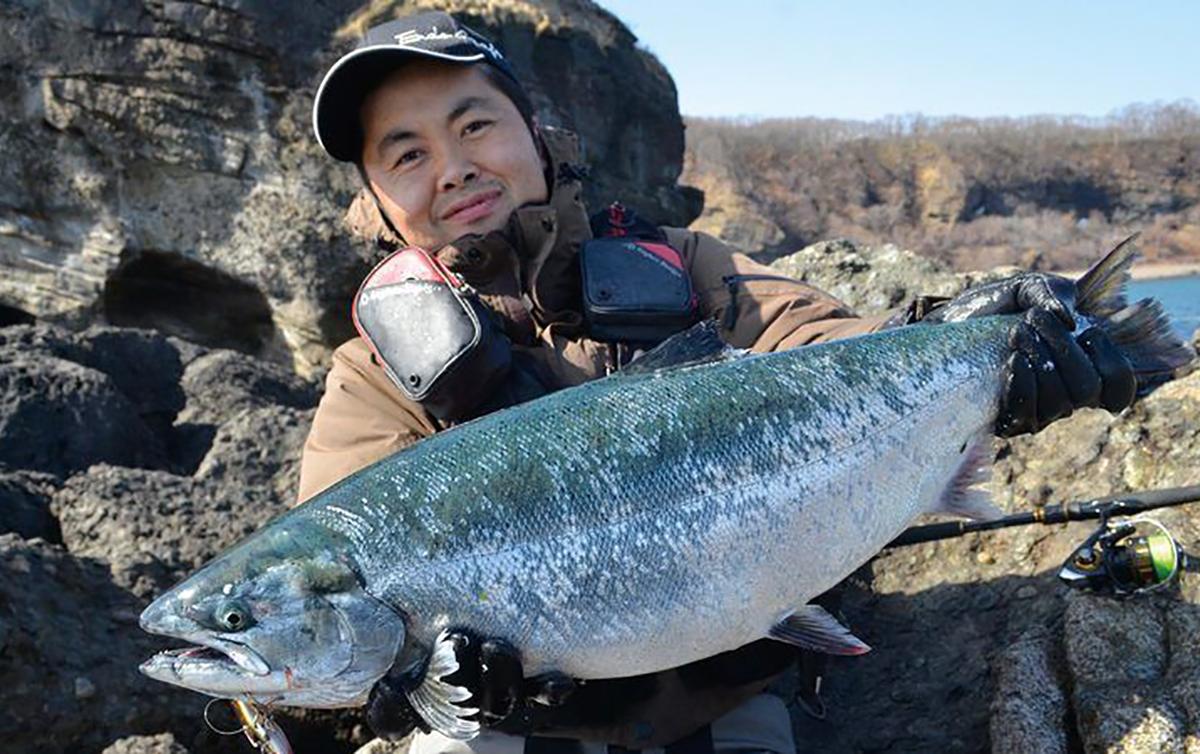 hokkaido-sakuramasu1806