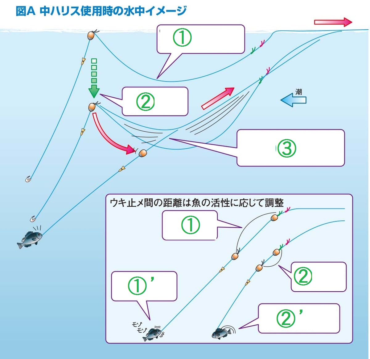 088-091tanaka-highteku_cs6 (18)