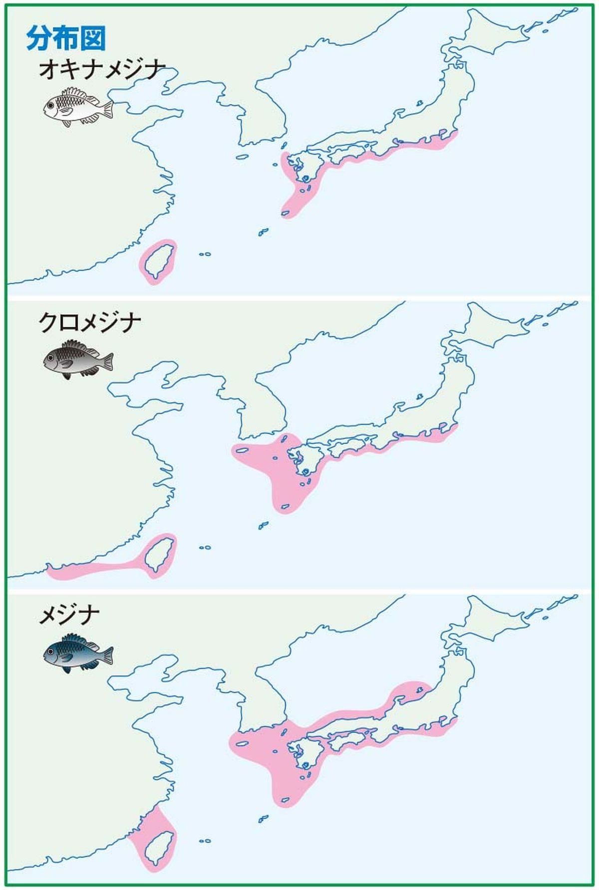 112-114mejinagaku_cs6 (18)