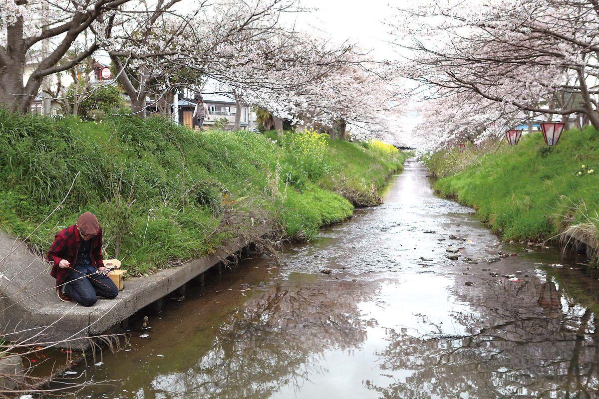 024-029oumihachiman_cs6 (9)