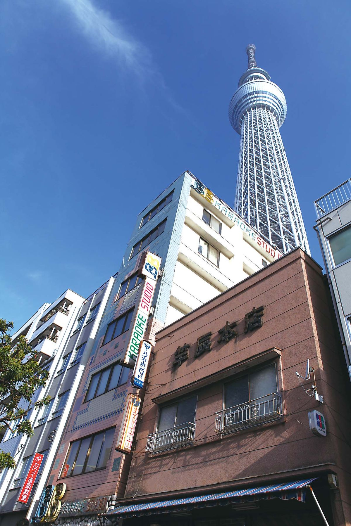 038-041mihobuna-mankai_cs6 (3)