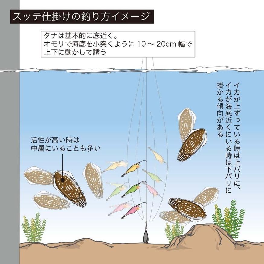 058-061shiriyakeika-image1