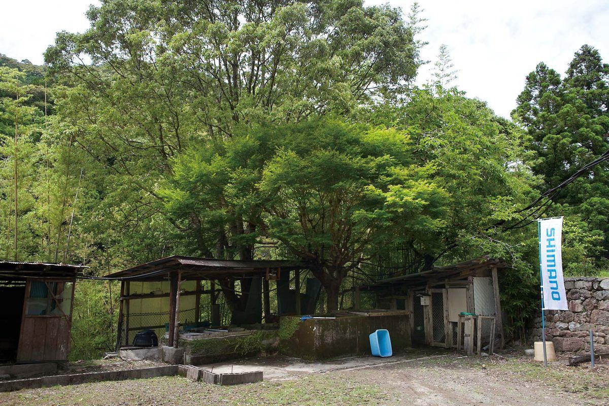 028-031kozagawa-metaking_cs6 (13)