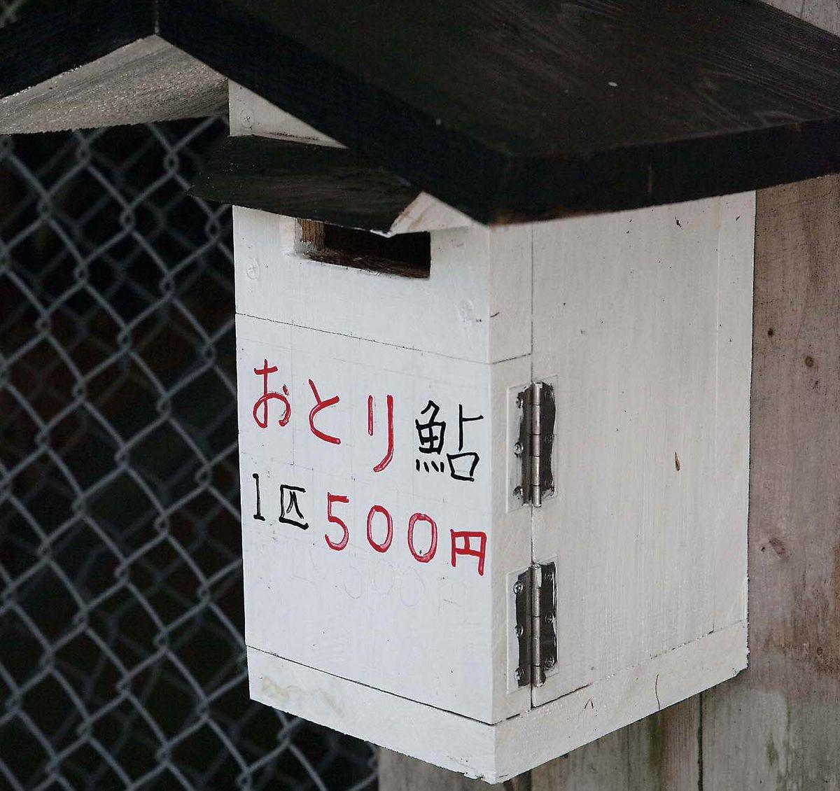 028-031kozagawa-metaking_cs6 (14)