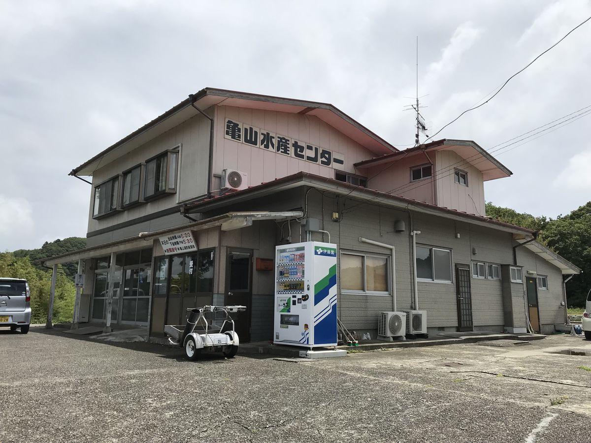 内山幸也先生に教わるフロッグテクニック:亀山水産センター