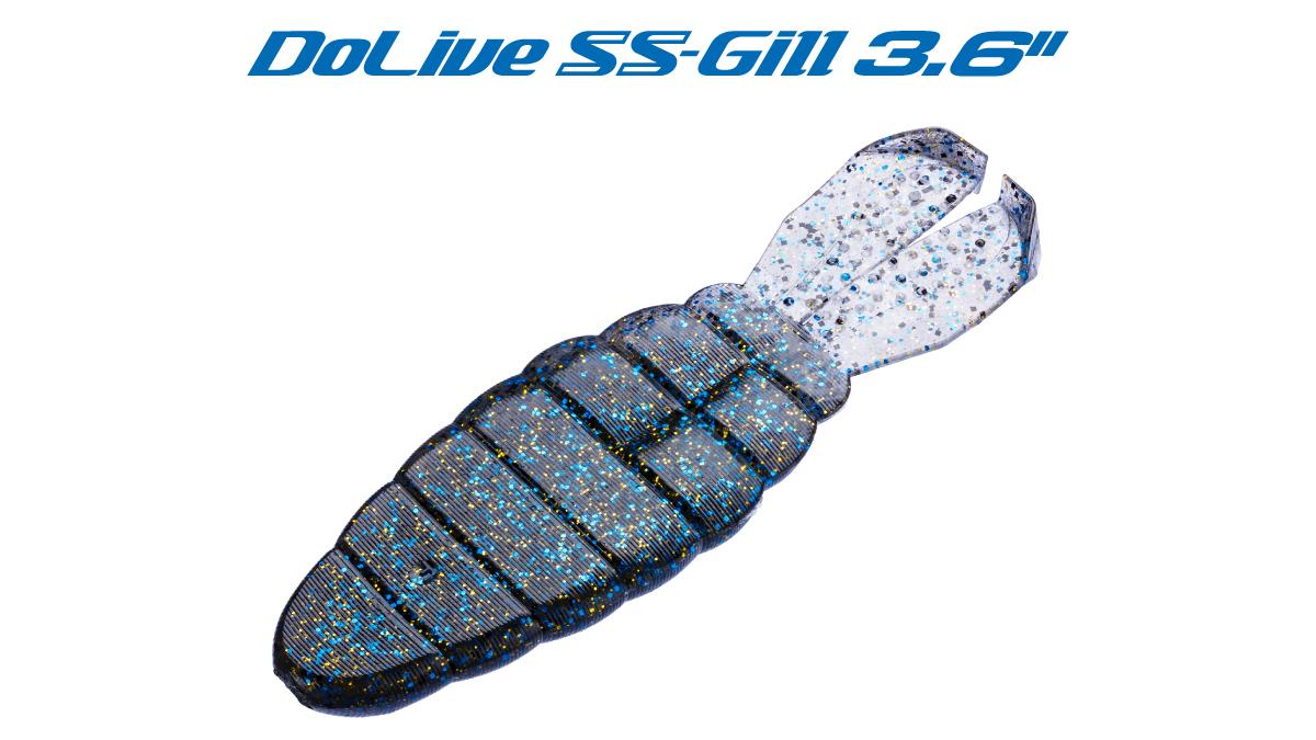 ssgill-title