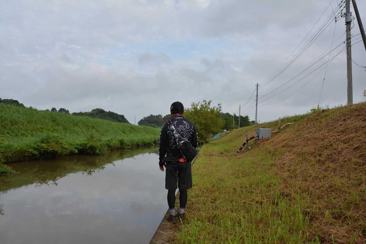 【ダイワ×ヤマモト・ネコストレート&ネコファット】高橋川