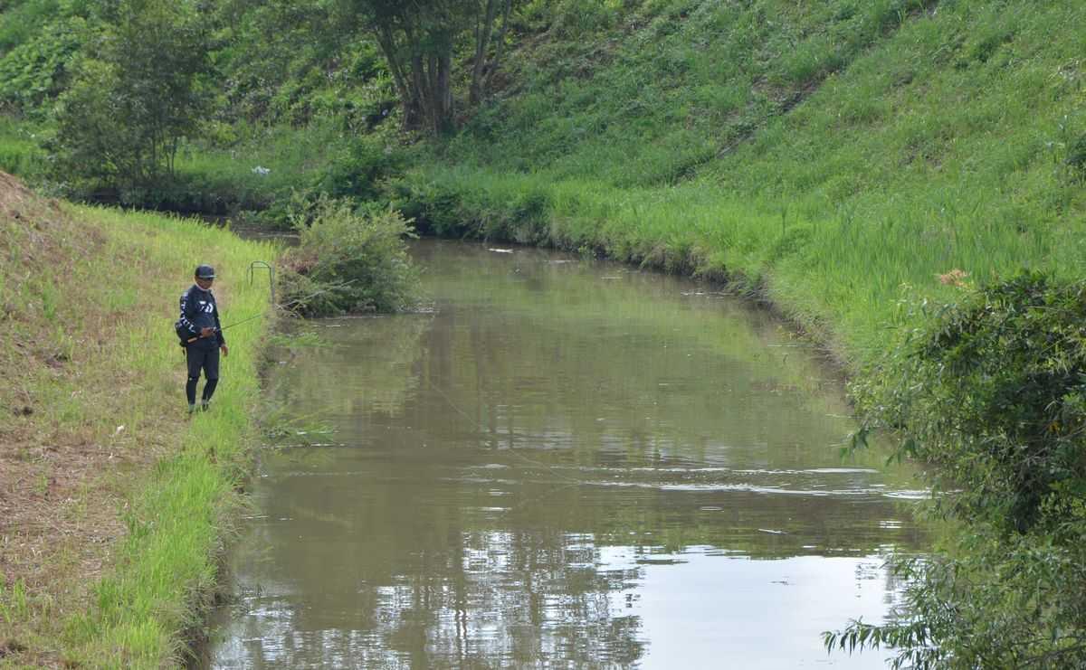 【ダイワ×ヤマモト・ネコストレート&ネコファット】高橋川で垂直護岸を撃つ