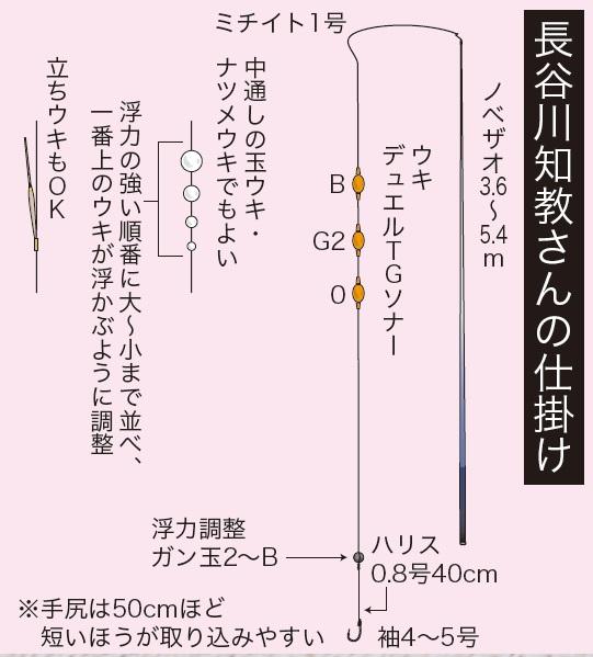 umitanago-miura1605